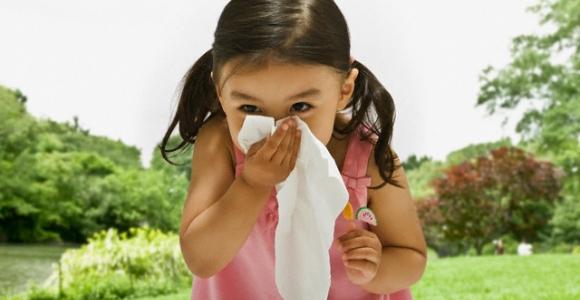alergologes-konsultacija-kaip-nustatyti-alergijos-priezastis-1885